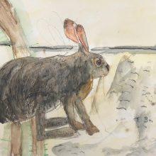 Rabbit Illustation by , Insight School of Art