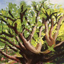 Tree by Elisa Sterlini, Insight School of Art