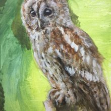 Owl by Luke, Insight School of Art