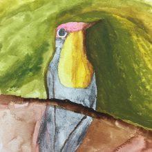 Bird Watercolour by , Insight School of Art